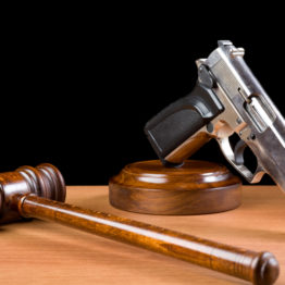 Domestic Violence Convictions and Firearms